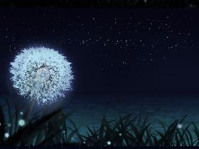 毕业设计-二维动画《微光》