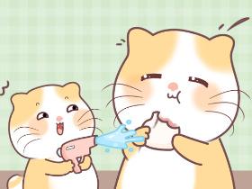 【毛豆的夏天】表情包上架啦!