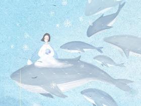 《曾鲸来过》——小美马