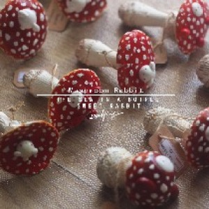 原创手作 鹅膏菌 红蘑菇兔玻璃罐标本