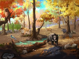 图书插画 -《奇妙的生态系统》