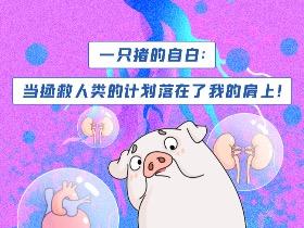 《一只猪的自白》科普系列长图漫画