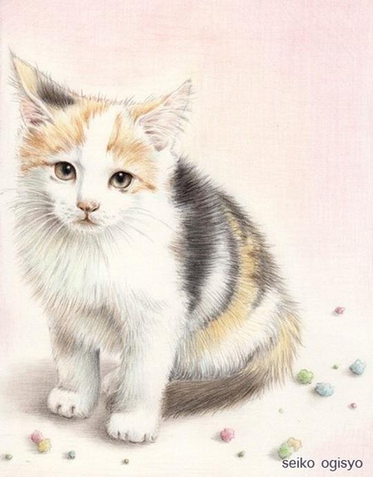 可爱彩铅_彩铅---可爱的猫精灵-插画绘画-彩铅-七家团子-汇漫网(huiman)